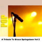 Studio Group -- A Tribute To Bruce Springsteen Vol 2
